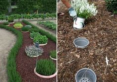 Pomysł na aleję w ogródku