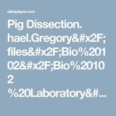 Pig Dissection.  hael.Gregory/files/Bio%20102/Bio%20102 %20Laboratory/Fetal%20Pig/Fetal%20Pig. htm. -  ppt download