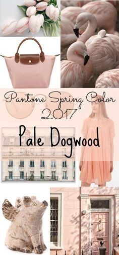 Ways to incorporate Pantone spring color pale dogwood into your home and your wardrobe- what lovely color inspiration!