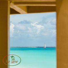 The calm of Low Bay Barbuda! #SeptemberFilmMonth #filmphotography #filmisnotdead #believeinfilm #ishootfilm#filmphotography #filmisnotdead #believeinfilm #ishootfilm #Barbuda #LoveAntiguaBarbuda