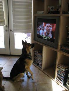 Kyreah watching Labyrinth