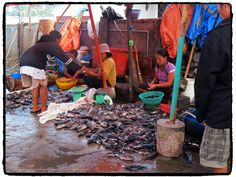 Les marchés de poissons  Site - http://indonesie.eklablog.com Page Facebook - https://www.facebook.com/pages/Indon%C3%A9sie-par-Isabelle-Escapade/269389553212236?ref=hl