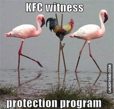 KFC witness protection program.
