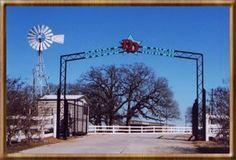Double D Ranch - Mesquite, TX
