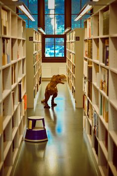 Little tiny T-Rex arms can't grab the books - dinosaur library Dewey Decimal System, Library Humor, Jurassic Park World, Library Displays, I School, Reading Nook, T Rex, Book Nerd, Bibliophile