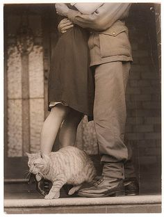 """Soldier's goodbye & Bobbie the cat"", c. World War II by Sam Hood (by State Library of New South Wales collection) Vintage Pictures, Old Pictures, Old Photos, Cute Pictures, Vintage Dior, Vintage Love, Vintage Romance, Gato Grande, Vintage Couples"