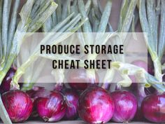 Help your fruits and vegetables last longer with this Produce Storage Cheat Sheet Printable!