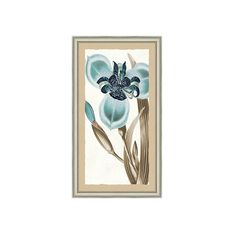 "Ballard Designs Eleganza Art  44"" x 26"" ($299) ❤ liked on Polyvore featuring home, home decor and wall art"