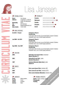 CV gemaakt door De Leydsche