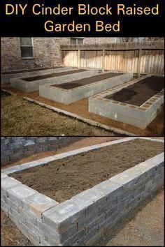 Protect Your Produce from Rodents by Building This City-Proof Raised Garden Bed - What sort of produce will you be growing in your cinder block raised garden bed? What sort of produce will you be growing in your cinder block raised garden bed? Raised Garden Beds Cinder Blocks, Cinder Block Garden, Building A Raised Garden, Raised Beds, Olive Garden, Vegetable Garden Design, Diy Garden Projects, Garden Boxes, Growing Vegetables