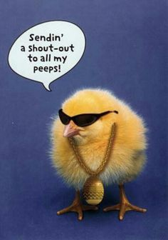 To All My Peeps!