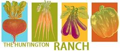 Root Simple: Huntington Ranch Workshop: Foraging and the Living Kitchen