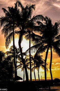 Aruba Por do Sol Hotel Holiday by Algacir Gurgacz, via Flickr