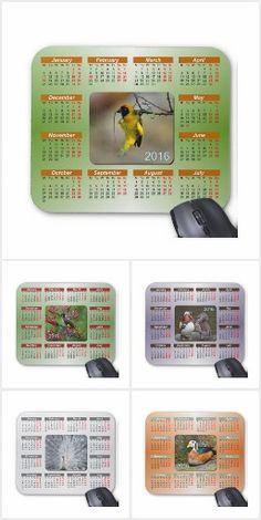 Exotic Birds Mouse Pad Calendars.  A beautiful collection of 2016 Calendar Mouse Pads featuring exotic birds from around the world