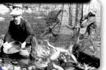 grants family Finding Your Roots, Gold Miners, Genealogy Search, British Columbia, Family History, Social Studies, Vancouver, Archive, Canada