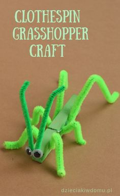 clothespin grasshopper craft for kids