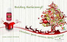 A Christmas Spirit egy édes, fűszeres keverék narancs, fahéj és lucfenyő illóolajaiból, amelyek a karácsonyi időszakhoz kapcsolódó boldogságot, örömöt és biztonságotidézik fel.ILLÓOLAJOK: Narancs, fahéj, lucfenyő