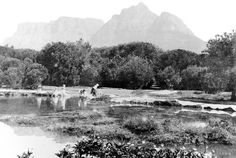 Washer women at the seasonal wetland on Rondebosch Common Cape Town South Africa, Most Beautiful Cities, Historical Pictures, African History, California Travel, Old Photos, Places To Visit, Washer, Landscape