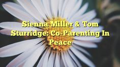 Sienna Miller & Tom Sturridge: Co-Parenting In Peace - https://twitter.com/pdoors/status/802293979261779968
