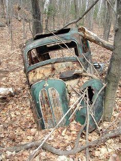 old car in the bush..............   ................................♥...Nims...♥