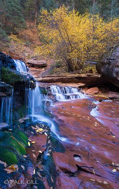 The Subway, Zion National Park, Utah   Paul Gill