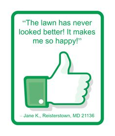 Thank you for considering ProLawnPlus to help beautify your home's lawn, trees, and shrubs. You can read further comments made by other past customers here: http://prolawnplus.com/about-us/testimonials/
