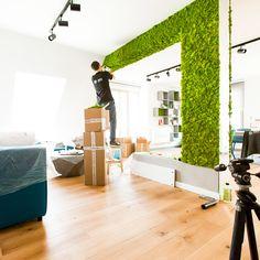 Portfolio -Scandinavian Moss on Behance Simple False Ceiling Design, Building Kitchen Cabinets, Moss Wall Art, Home Design Plans, Scandinavian, Behance, House Design, Interior Design, Wall Panelling