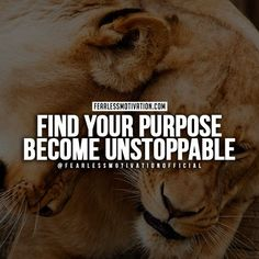 This photo about: Determination Lion Quotes Fearless Motivation 30 Motivational Lion Quotes In Pictures Courage Strength, entitled as Success quotes lion - ebreezetv Fearless Quotes, Life Quotes To Live By, Motivational Quotes For Students, Motivating Quotes, Intj, Lioness Quotes, Powerful Women Quotes, Positive Quotes For Work, Top Quotes