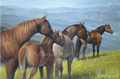 """Almost Heaven"" Horses oil painting by one of my favorite artists, Sharon Prestegard"