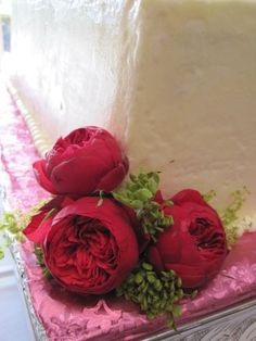 Garden roses as a substitute for peonies??