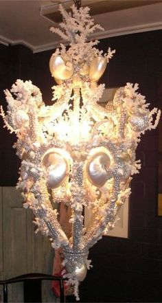 Shell encrusted chandelier designed and made by Colvin and Hastings Designs.