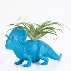 Dinosaur Planter with Air Plant Room Decor, College Dorm Ornament, Plants and Edibles. $20.00, via Etsy.