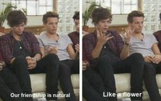 That was deep, Harry. Almost as deep as your voice. | #1DMemories