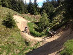 gisburn forest bike trails - Google Search