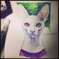 cats photo practice  draw watercolor