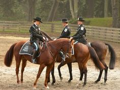 US Park Police - Mounted Squad www.PoliceHotels.com