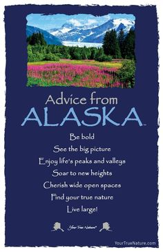 Each postcard says: Advice from Alaska Be bold See the big picture Enjoy life's peaks and valleys Soar to new heights Cherish wide open spaces Find your true na Advice Quotes, Life Advice, Good Advice, Wisdom Quotes, Me Quotes, Advice Cards, Qoutes, Frog Quotes, Animal Spirit Guides