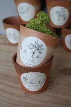 Pots à semis. http://legrenierdeninon.canalblog.com/
