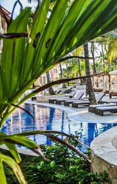 Make the whole family happy with trampolines, margaritas, and a snorkelling excursion with these family-friendly Punta Cana resorts. Best All Inclusive Resorts, Family Resorts, Hotels And Resorts, Vacation Trips, Vacation Spots, Kid Friendly Vacations, Kids Things To Do, Beach Friends, Punta Cana