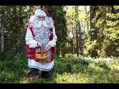 Papá Noel recolectando frutas del bosque en Finlandia