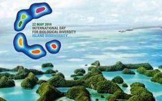 Oggi 22 maggio si celebra la giornata mondiale per la biodiversità #natura #ambiente #onu