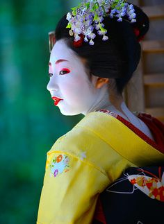 Maiko Toshimomo wearing wisteria kanzashi for the month may.