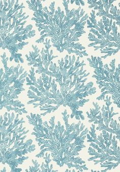 Marine Coral Wallpaper by Thibaut Coastal Wallpaper, Turquoise Wallpaper, View Wallpaper, Bathroom Wallpaper, Pattern Wallpaper, Beautiful Wallpaper, Print Wallpaper, Construction Wallpaper, Pisces