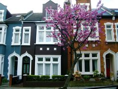 Terraced Houses, Joel Bond Travels, London Discovery