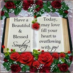 Good Morning Everyone, Have a Beautiful Blessed Sunday, let us rejoice in the…