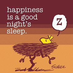 Happiness is getting a good night's rest 💤 Peanuts Cartoon, Peanuts Snoopy, Good Night Quotes, Good Morning Good Night, Morning Light, Goodnight Snoopy, Snoopy Comics, Snoopy Quotes, Favorite Cartoon Character