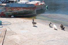 Αγιος Νικόλαος - Κρήτη