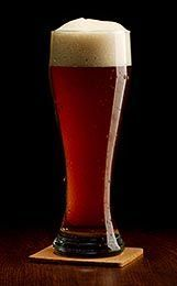 Munich Dunkel Lager From Beer Recipe