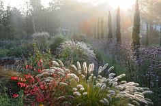 Jürgen Becker  Beautiful Gardens   Portfolio:  A Vision becomes a Garden  Image:  I came to know Peter, a young garden designer and plantsman, when he started to plan his garden in Hilden, Germany
