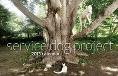 Check out the Service Dog Project's cute 2013 calendar.